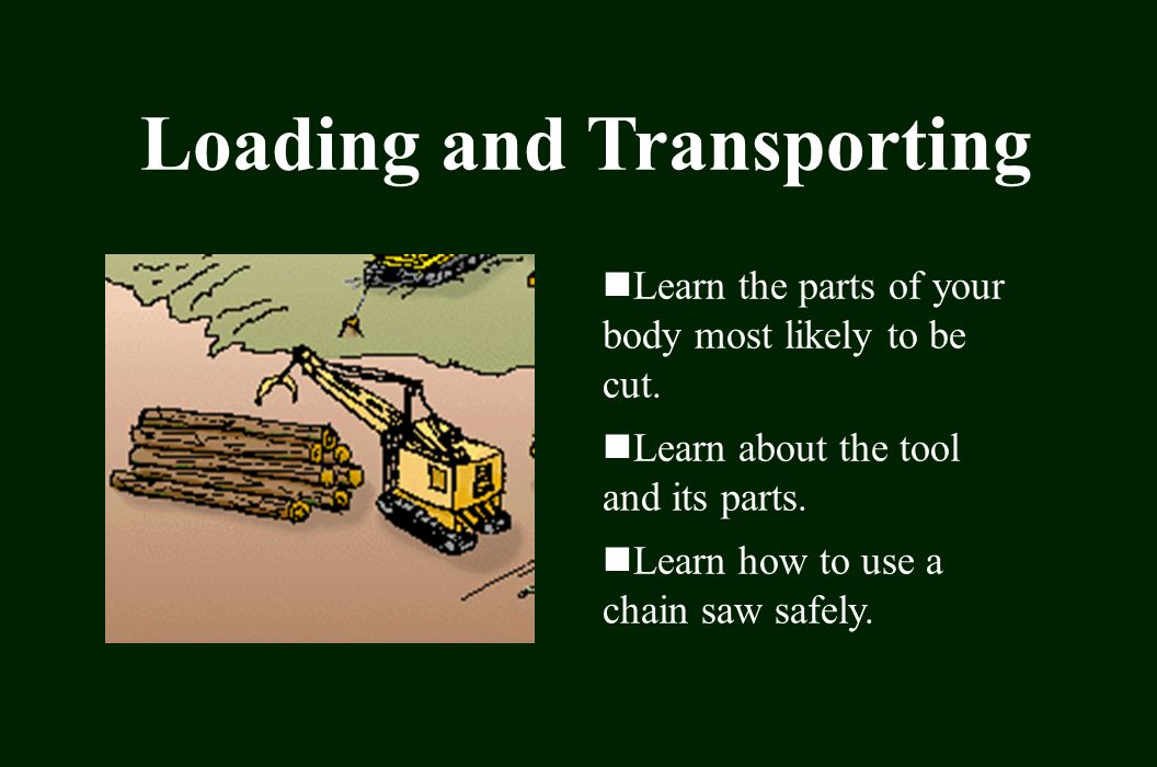Loading and Transporting Learn the parts of your body most likely to be cut.
