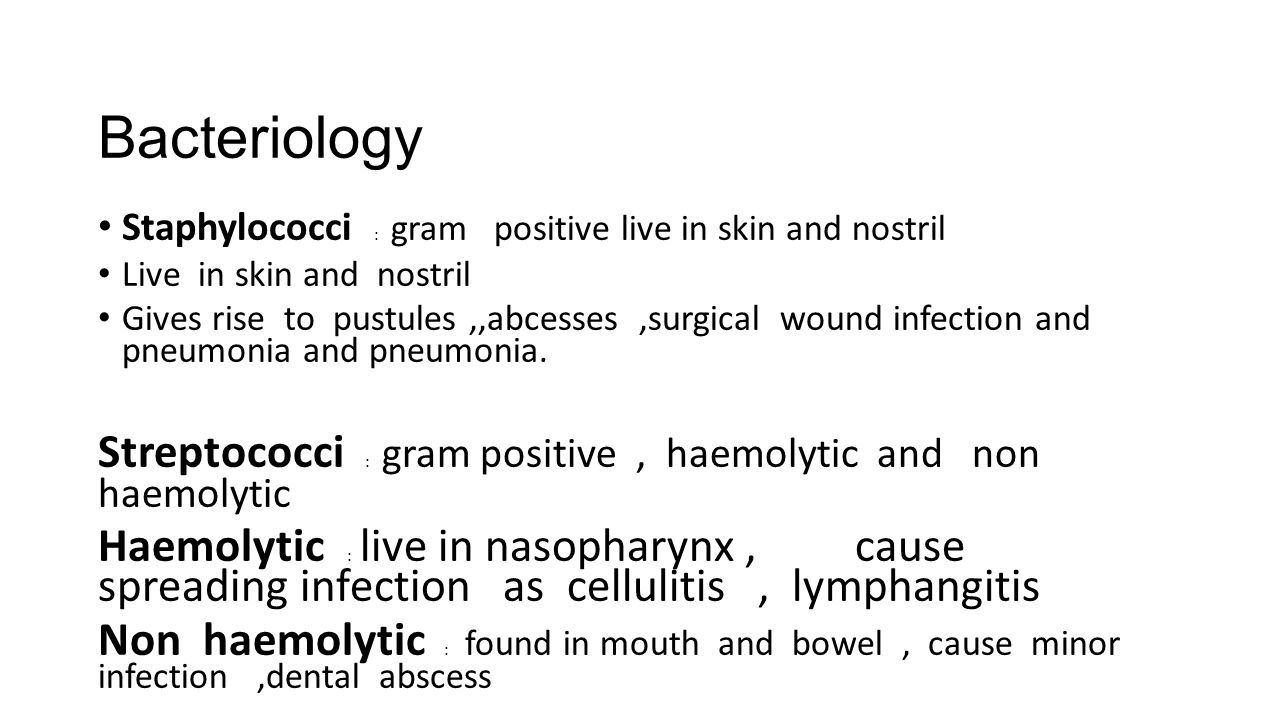 Bacteriology Staphylococci : gram positive live in skin and nostril Live in skin and nostril Gives rise to pustules,,abcesses,surgical wound infection