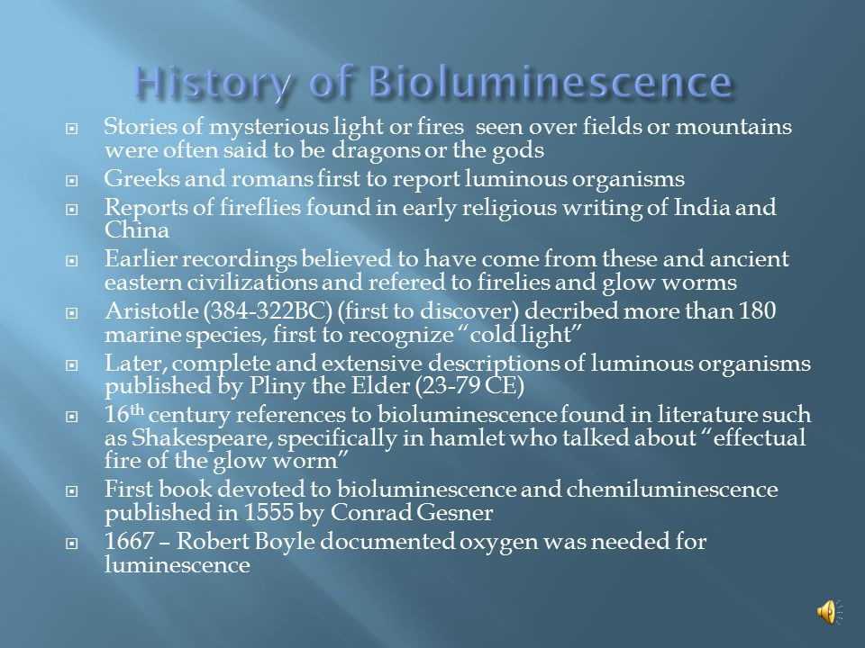  Bioluminescence: light is created through a chemical reaction.