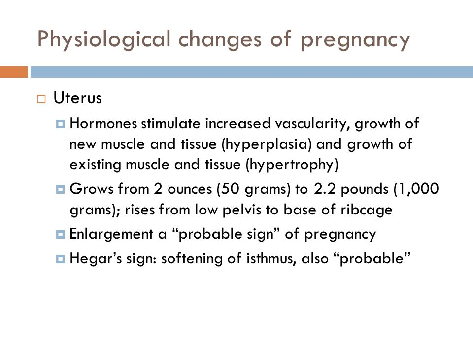 Physiological changes of pregnancy  Uterus  Hormones stimulate increased vascularity, growth of new muscle and tissue (hyperplasia) and growth of ex
