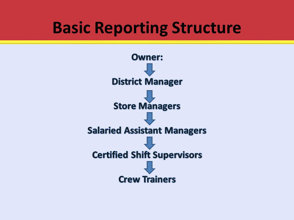 Basic Reporting Structure