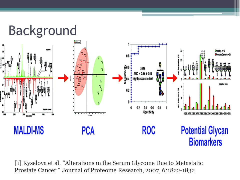 Background [1] Kyselova et al.