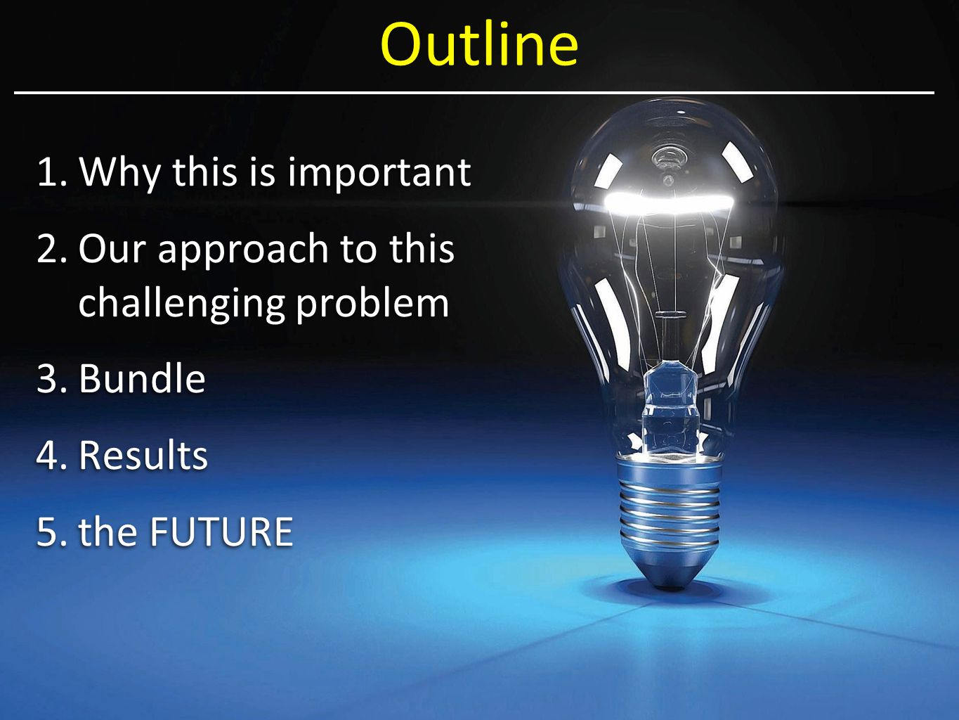 Outline 1.Why this is important 2.Our approach to this challenging problem 3.Bundle 4.Results 5.the FUTURE