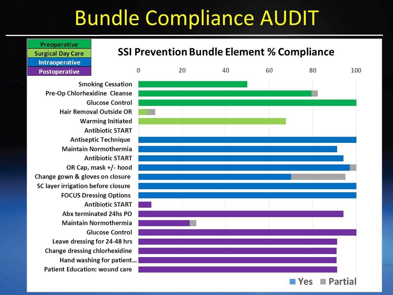 Bundle Compliance AUDIT