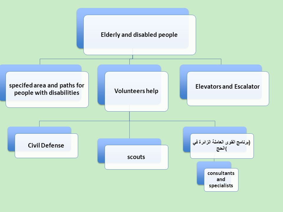 Elderly and disabled people specifed area and paths for people with disabilities Volunteers help Civil Defense scouts ( برنامج القوى العاملة الزائرة في الحج ( consultants and specialists Elevators and Escalator