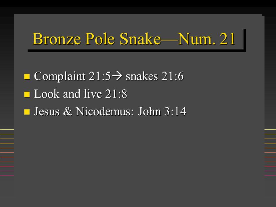 Bronze Pole Snake—Num.