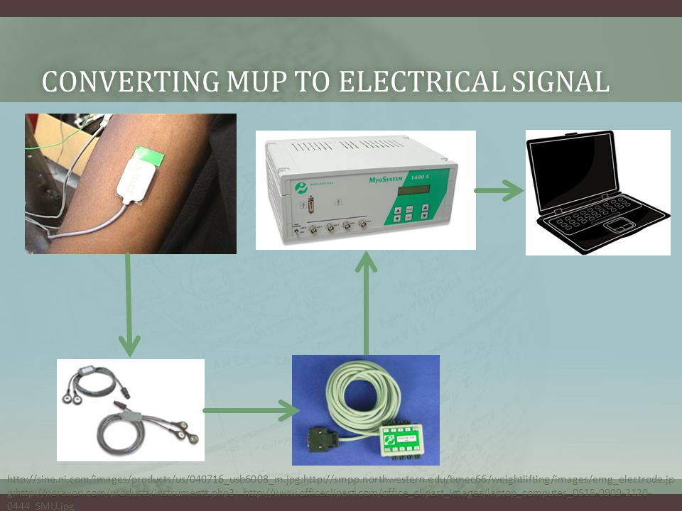 CONVERTING MUP TO ELECTRICAL SIGNALCONVERTING MUP TO ELECTRICAL SIGNAL http://sine.ni.com/images/products/us/040716_usb6008_m.jpg;http://smpp.northwestern.edu/bmec66/weightlifting/images/emg_electrode.jp g;http://noraxon.com/products/instruments.php3; http://www.officeclipart.com/office_clipart_images/laptop_computer_0515-0909-2120- 0444_SMU.jpg