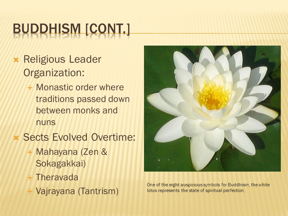  Religious Leader Organization:  Monastic order where traditions passed down between monks and nuns  Sects Evolved Overtime:  Mahayana (Zen & Sokagakkai)  Theravada  Vajrayana (Tantrism) One of the eight auspicious symbols for Buddhism, the white lotus represents the state of spiritual perfection.