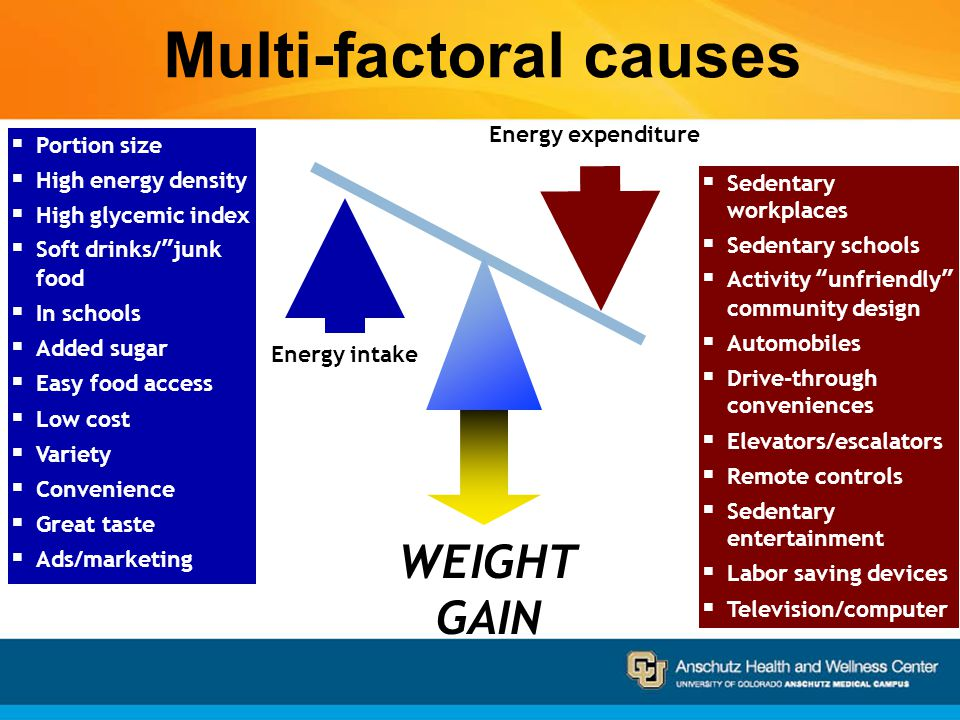 Obesity: Evolutionary Biology, the Environment, Society and You