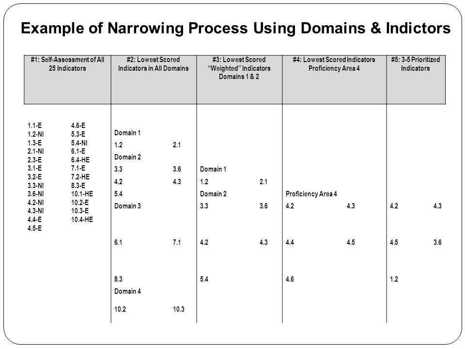 "#1: Self-Assessment of All 25 Indicators #2: Lowest Scored Indicators in All Domains #3: Lowest Scored ""Weighted"" Indicators Domains 1 & 2 #4: Lowest"