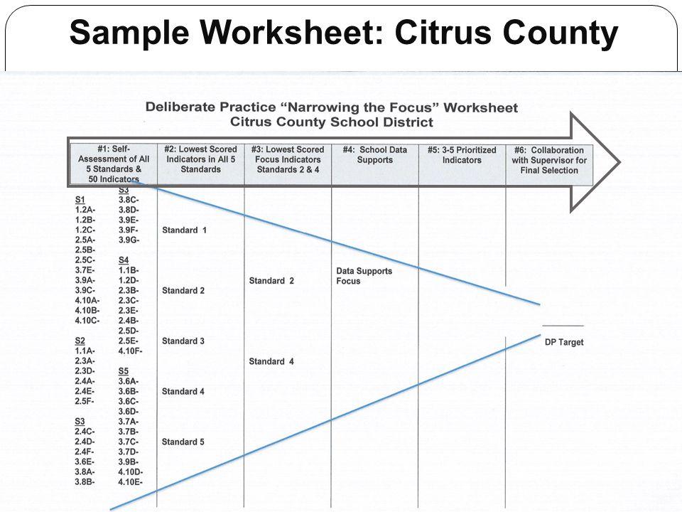 Sample Worksheet: Citrus County