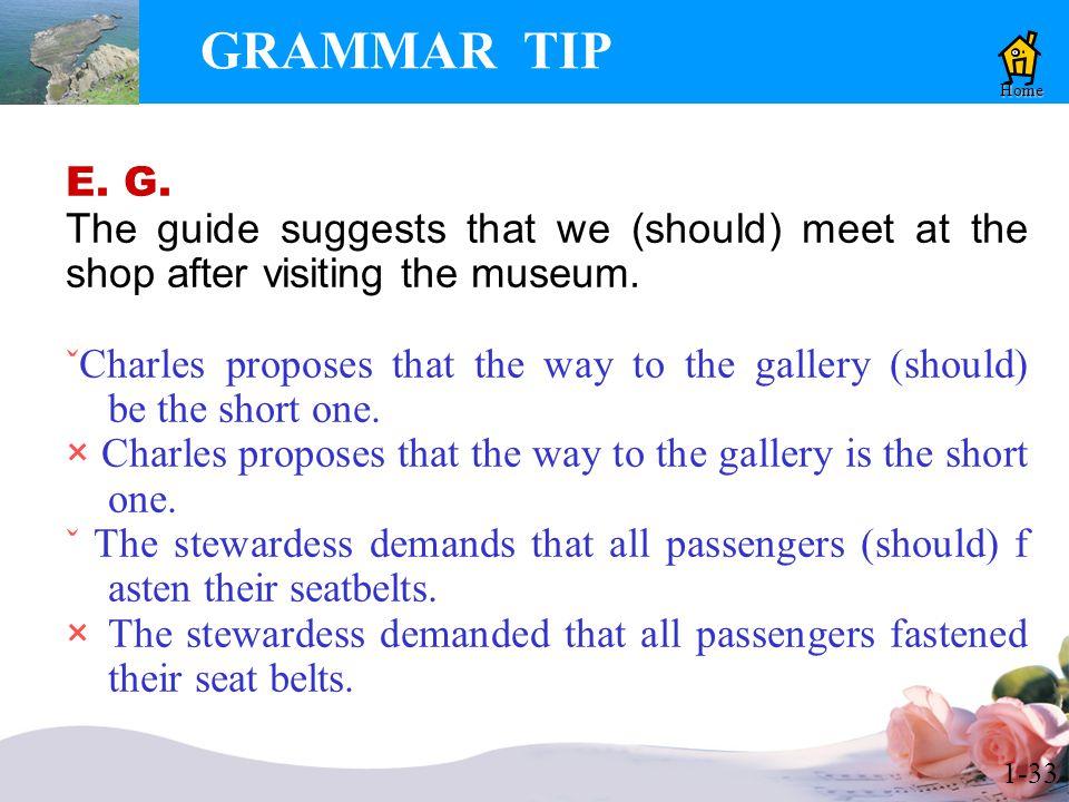 1-33 GRAMMAR TIP E. G.