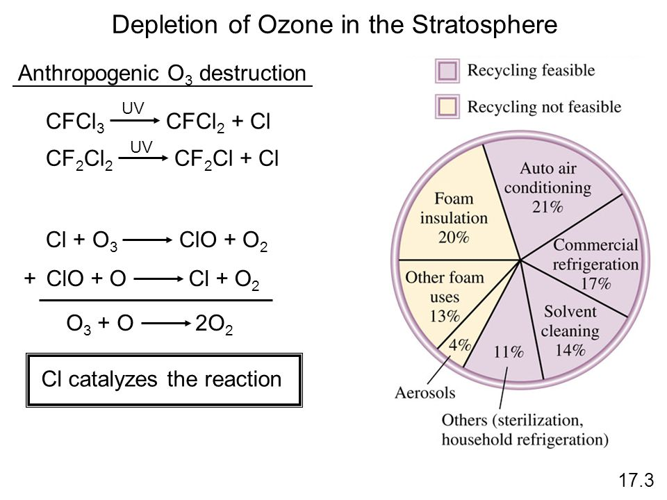 Depletion of Ozone in the Stratosphere Anthropogenic O 3 destruction CFCl 3 CFCl 2 + Cl UV CF 2 Cl 2 CF 2 Cl + Cl UV Cl + O 3 ClO + O 2 ClO + O Cl + O 2 + O 3 + O 2O 2 Cl catalyzes the reaction 17.3
