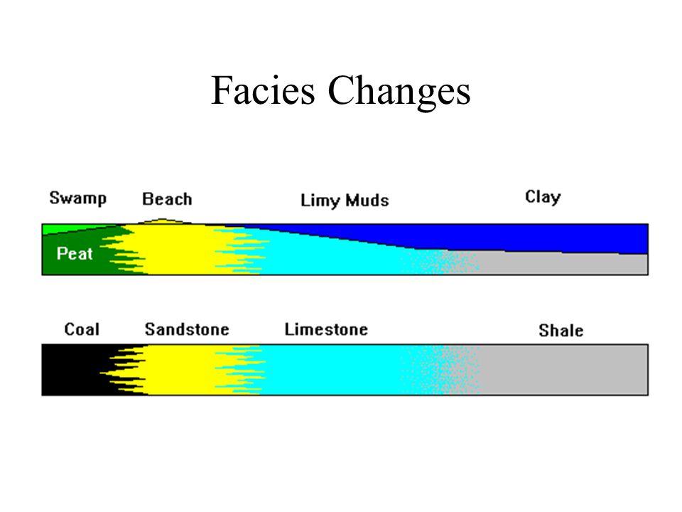 Facies Changes