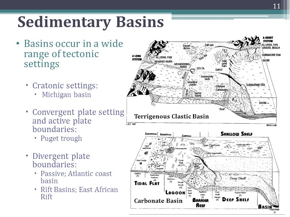 Sedimentary Basins Basins occur in a wide range of tectonic settings  Cratonic settings:  Michigan basin  Convergent plate setting and active plate