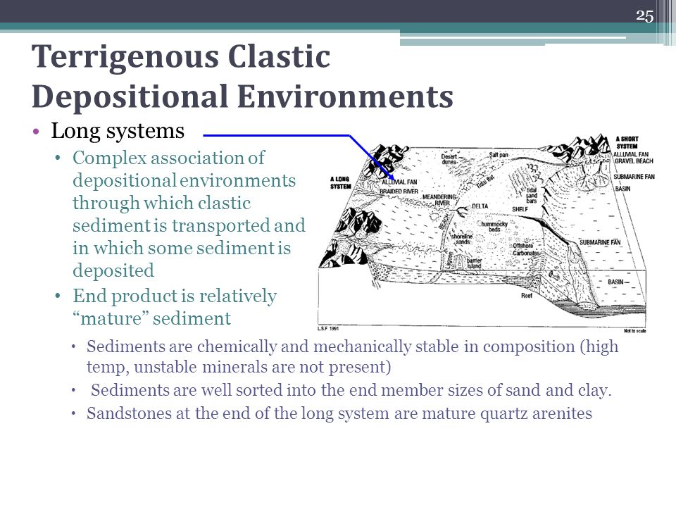 Terrigenous Clastic Depositional Environments Long systems Complex association of depositional environments through which clastic sediment is transpor