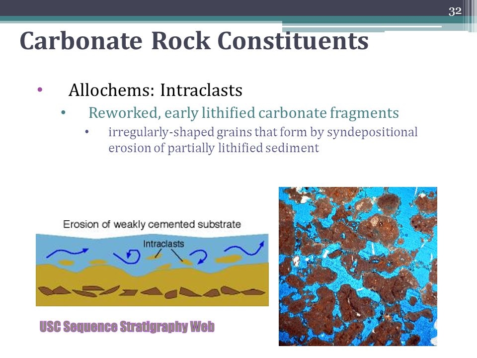 Carbonate Rock Constituents Allochems: Intraclasts Reworked, early lithified carbonate fragments irregularly-shaped grains that form by syndepositiona