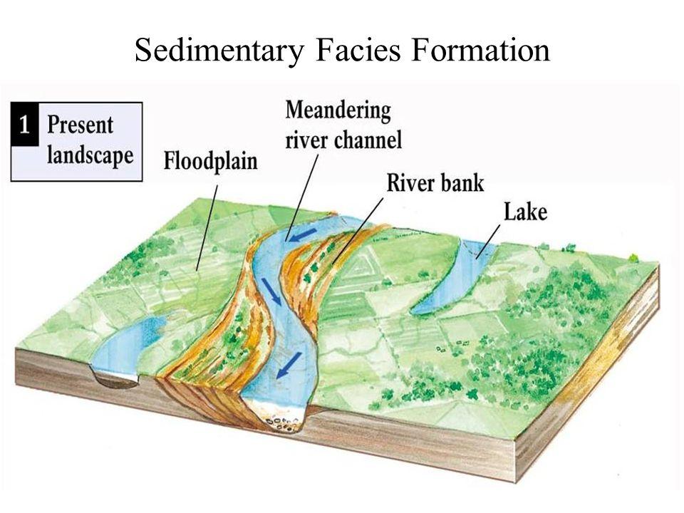 Sedimentary Facies Formation