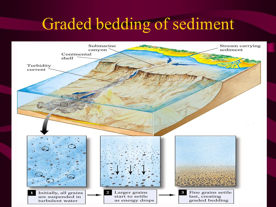 Graded bedding of sediment