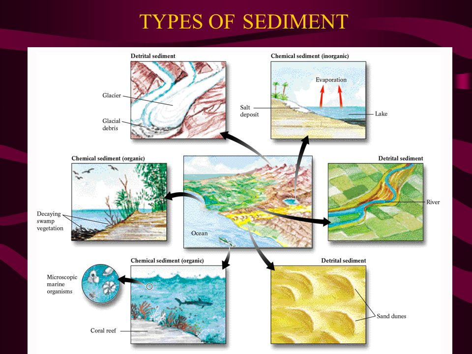 TYPES OF SEDIMENT