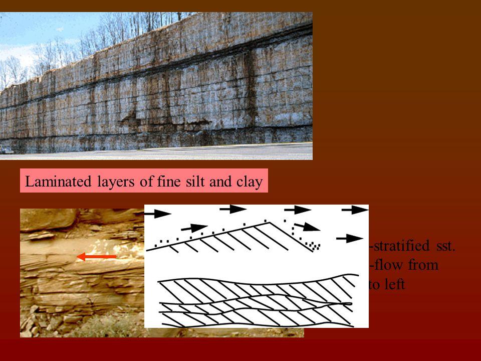 Fine gravelly lithounit Medium-coarse sandy lithounit (cross stratified)