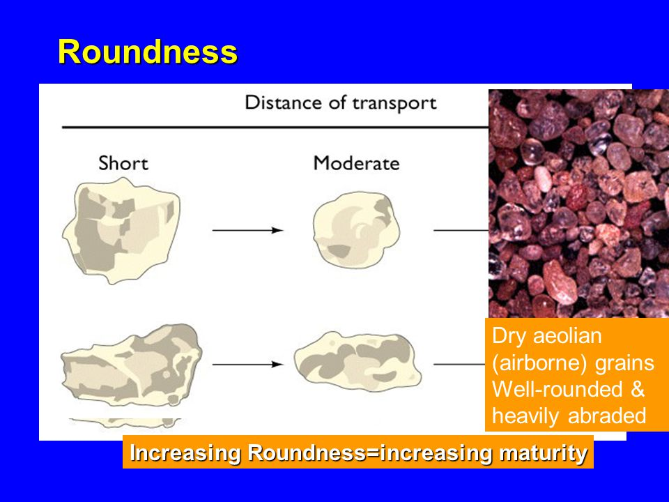 Roundness Increasing Roundness=increasing maturity Dry aeolian (airborne) grains Well-rounded & heavily abraded