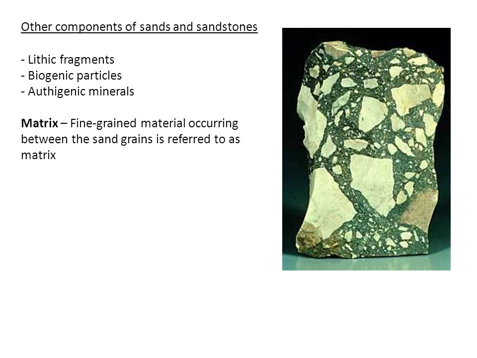 - Lithic fragments - Biogenic particles - Authigenic minerals Matrix – Fine-grained material occurring between the sand grains is referred to as matrix Other components of sands and sandstones