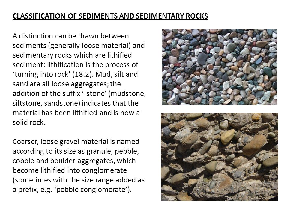 A distinction can be drawn between sediments (generally loose material) and sedimentary rocks which are lithified sediment: lithification is the process of 'turning into rock' (18.2).