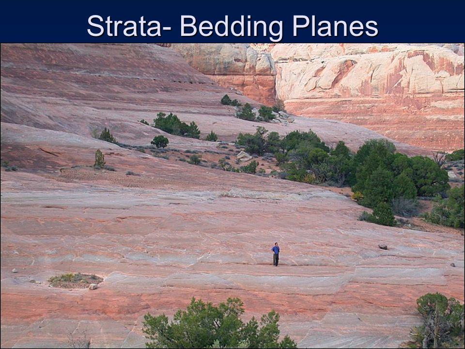 Strata- Bedding Planes