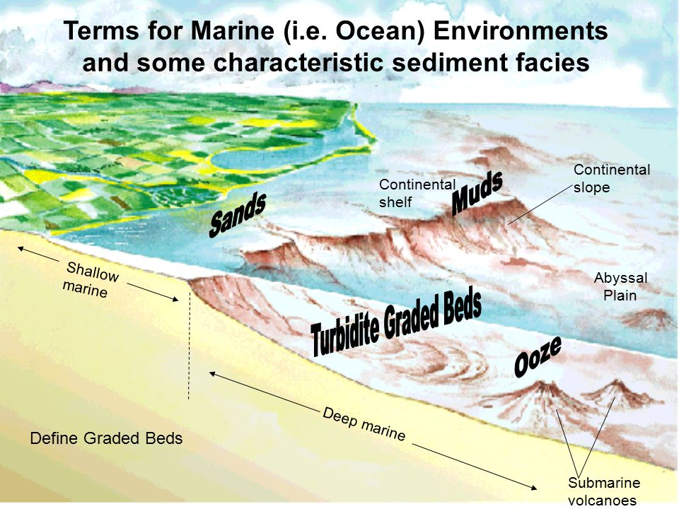 6_27 Continental shelf Continental slope Shallow marine Deep marine Submarine volcanoes Terms for Marine (i.e.