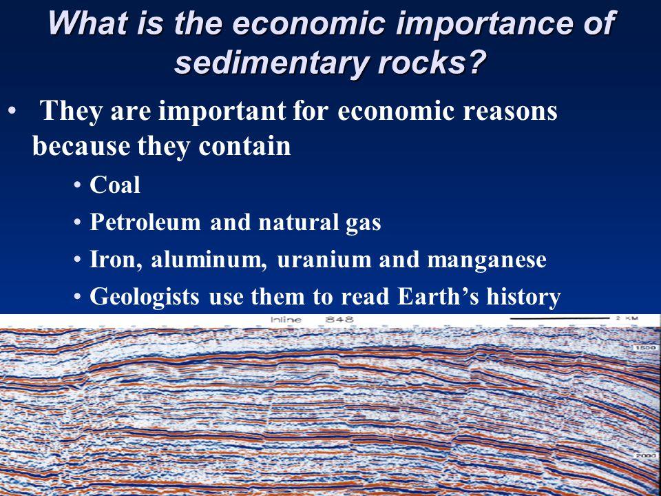 Chemical Sediments: Coal Chemical Sediments: Coal