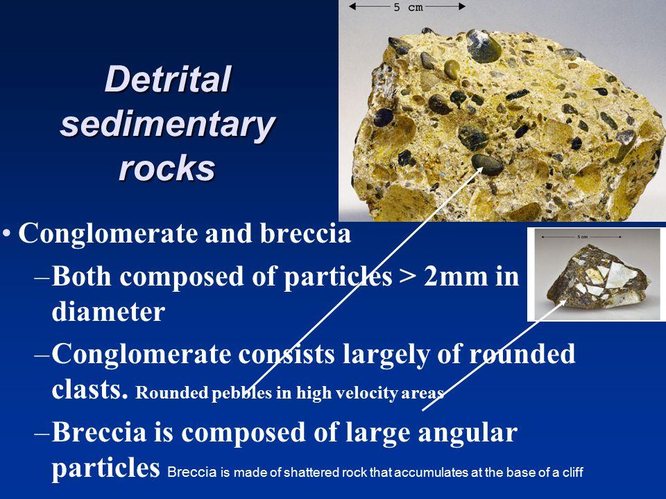Development of foliation due to directed pressure Development of foliation due to directed pressure GranodioriteGneiss