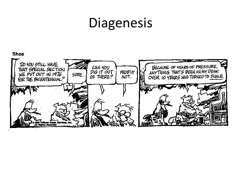 Diagenesis