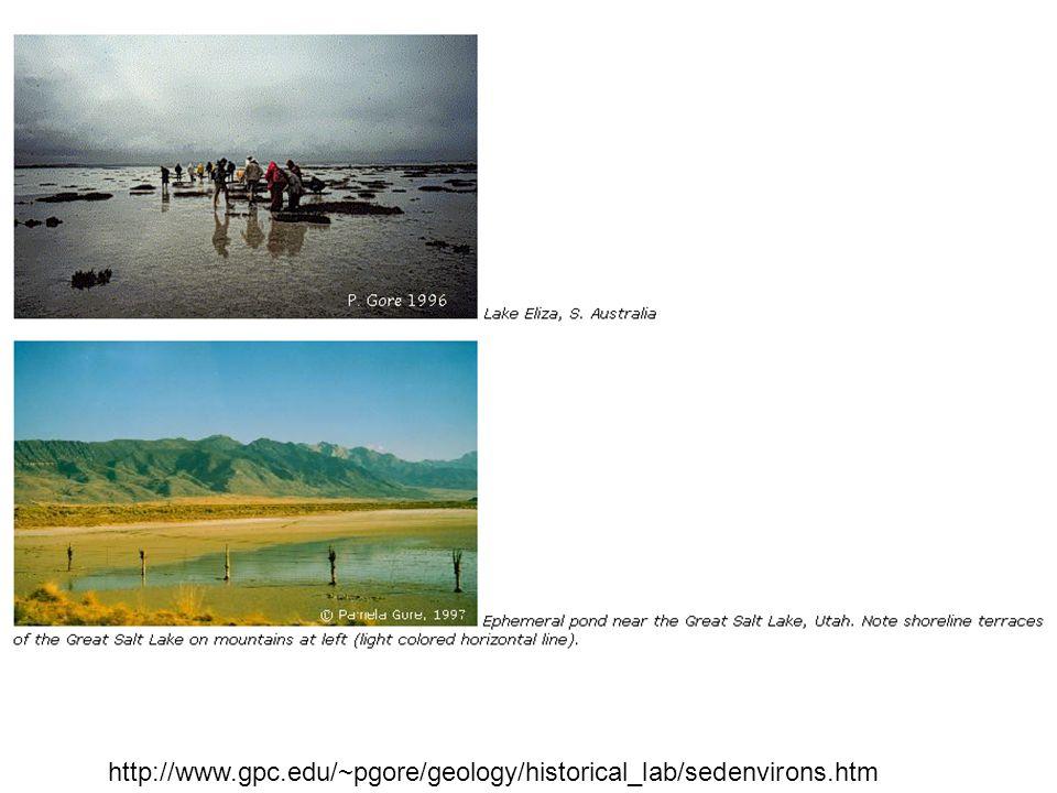 http://www.gpc.edu/~pgore/geology/historical_lab/sedenvirons.htm