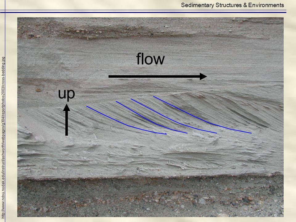 Sedimentary Structures & Environments http://www.ndsu.nodak.edu/instruct/ashworth/webpages/g304/reportphotos2003/cross-bedding.jpg flow up