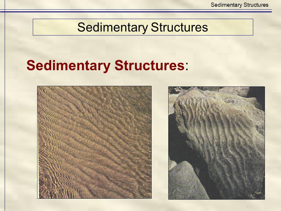 Sedimentary Structures: Sedimentary Structures