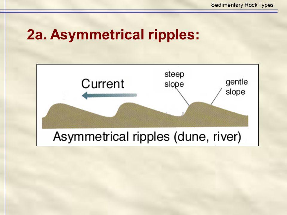 Sedimentary Rock Types 2a. Asymmetrical ripples: