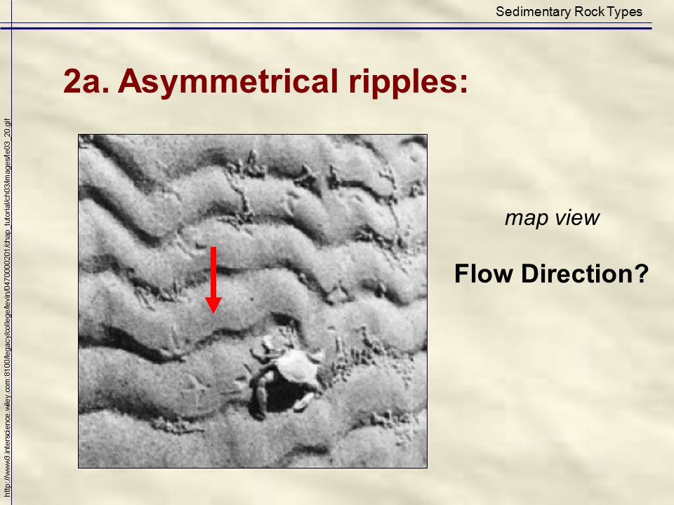 Sedimentary Rock Types 2a. Asymmetrical ripples: http://www3.interscience.wiley.com:8100/legacy/college/levin/0470000201/chap_tutorial/ch03/images/le0
