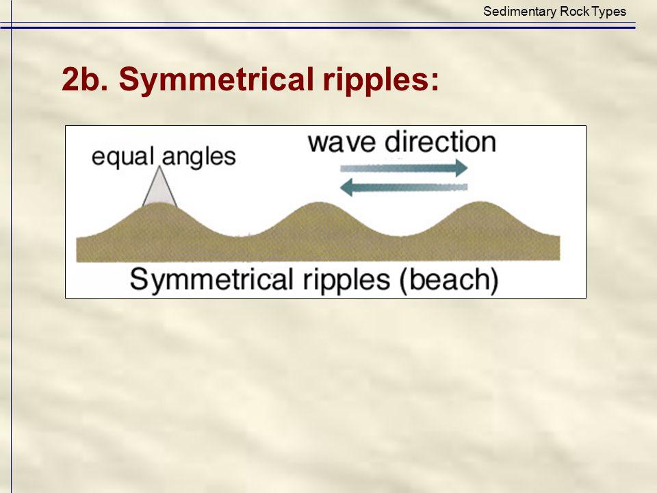 Sedimentary Rock Types 2b. Symmetrical ripples: