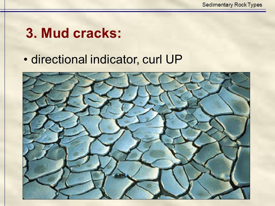 Sedimentary Rock Types 3. Mud cracks: directional indicator, curl UP