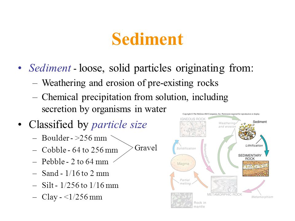 Sediment Sediment - loose, solid particles originating from: –Weathering and erosion of pre-existing rocks –Chemical precipitation from solution, including secretion by organisms in water Classified by particle size –Boulder - >256 mm –Cobble - 64 to 256 mm –Pebble - 2 to 64 mm –Sand - 1/16 to 2 mm –Silt - 1/256 to 1/16 mm –Clay - <1/256 mm Gravel