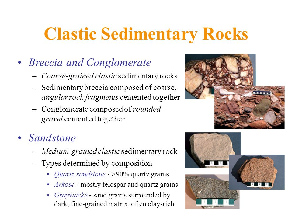 Clastic Sedimentary Rocks Breccia and Conglomerate –Coarse-grained clastic sedimentary rocks –Sedimentary breccia composed of coarse, angular rock fragments cemented together –Conglomerate composed of rounded gravel cemented together Sandstone –Medium-grained clastic sedimentary rock –Types determined by composition Quartz sandstone - >90% quartz grains Arkose - mostly feldspar and quartz grains Graywacke - sand grains surrounded by dark, fine-grained matrix, often clay-rich