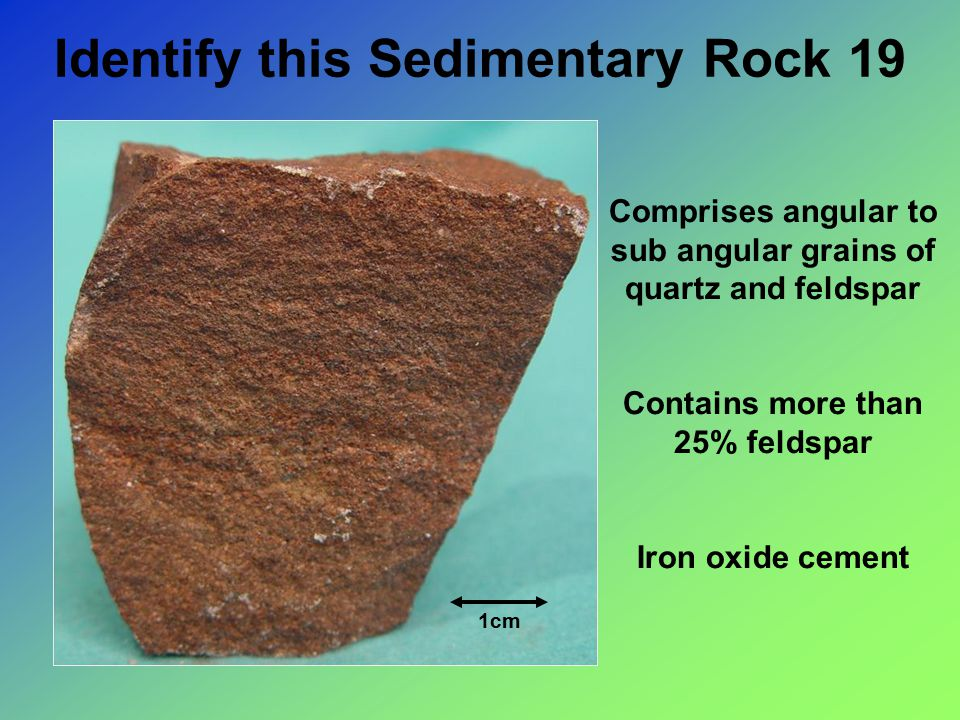 Identify this Sedimentary Rock 19 1cm Comprises angular to sub angular grains of quartz and feldspar Contains more than 25% feldspar Iron oxide cement