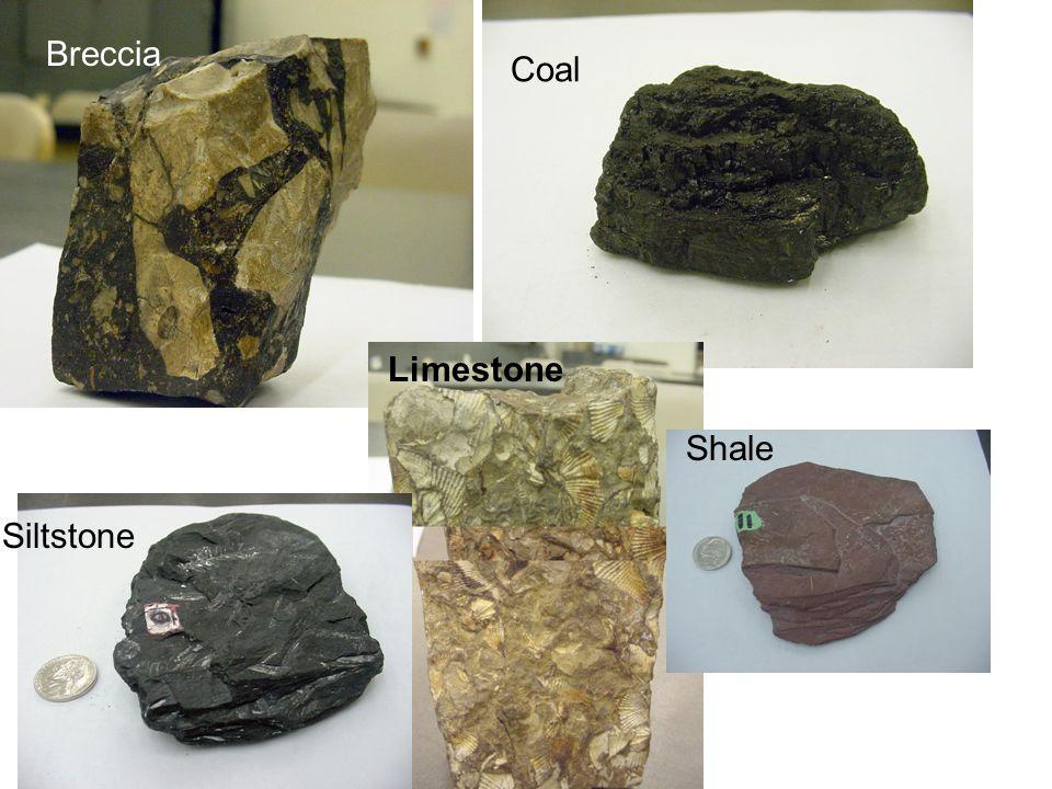 Breccia Coal Limestone Shale Siltstone