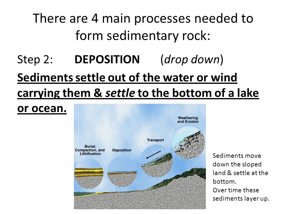 There are 4 main processes needed to form sedimentary rock: Step 3: COMPACTION (smashed together) Process that presses sediments together.