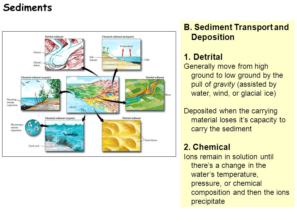 B.Sediment Transport and Deposition 1.