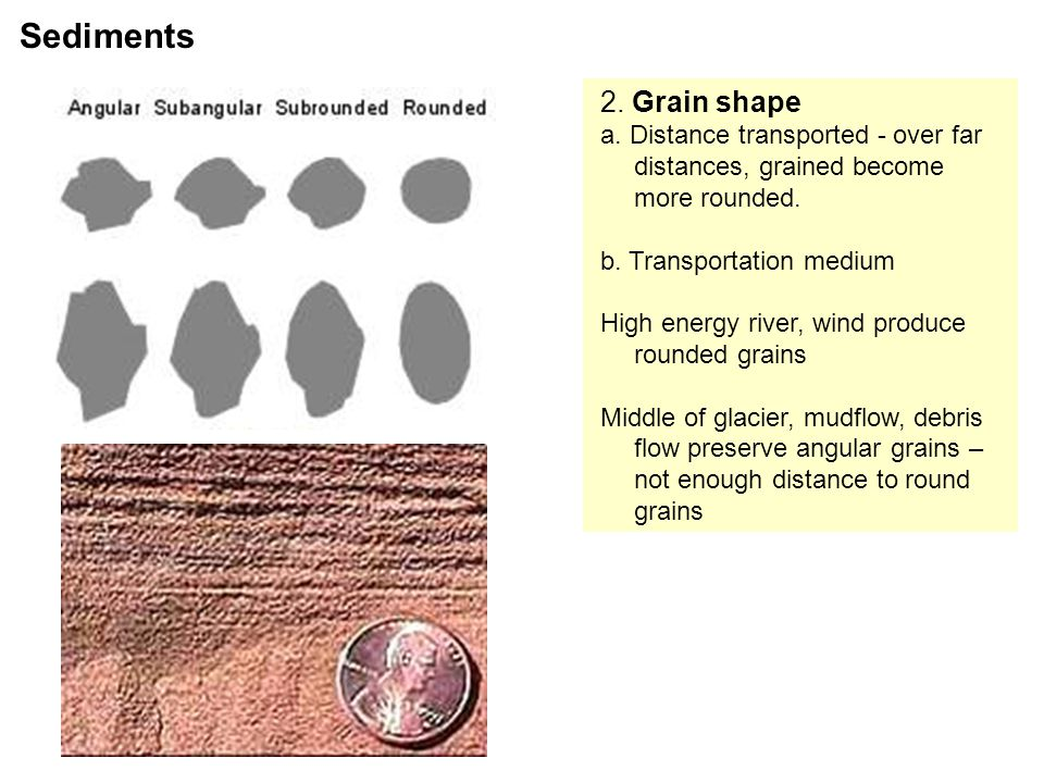 2.Grain shape a. Distance transported - over far distances, grained become more rounded.