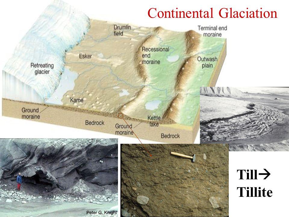 Continental Glaciation Till  Tillite