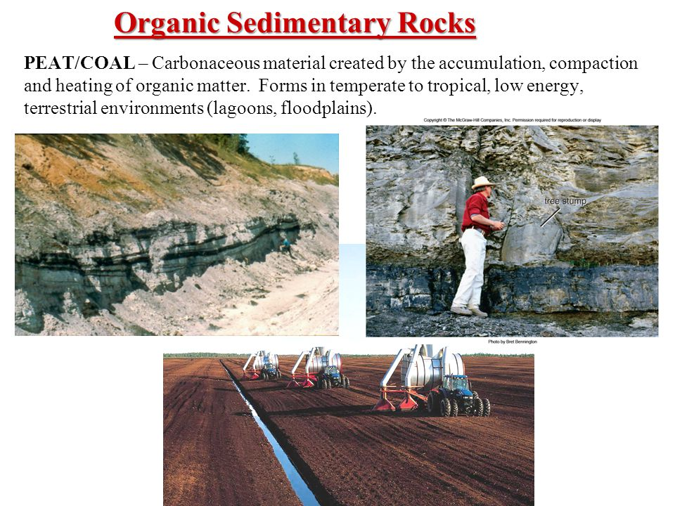 PEAT/COAL – Carbonaceous material created by the accumulation, compaction and heating of organic matter.