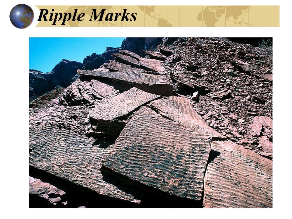 Ripple Marks
